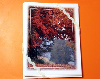 Autumn Road, Blank Card - Set of 5