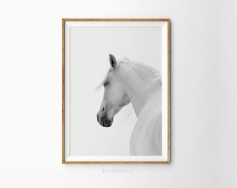 Horse photo print - White horse print - Black and white photography -  Printable wall art - Equestrian art - Modern minimal photo print