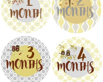 Bodysuit Stickers Milestone Stickers Baby Month Stickers Monthly Baby Stickers Photo Sticker Month by Month Baby Sticker Shower Gift Monthly