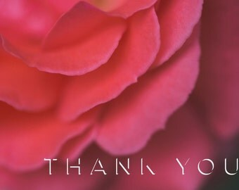 Printable Thank You Card - Rose - 5.5 x4 - Digital Download
