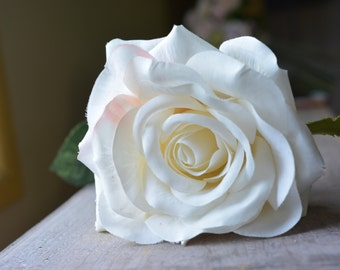 Belle Rose in white -ITEM037