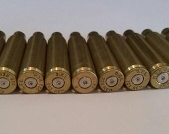 223 Rifle Casing - Silver Primer - Lot of 10 - Sku 120
