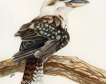 Laugh - Giclée print on archival Rag - Watercolor - Laughing Kookaburra