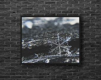 Snowflake Photography - Snowflake Print - Winter Wall Decor - Grey Wall Decor - Snow Photo - Ice Photo Print - Winter Photography - Grey