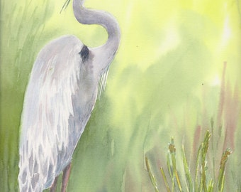 Great Blue Heron - Original Painting