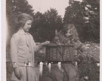 vintage photo 1924 Abstract Lights Rabbit Bunny in Basket weird unusual