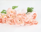 Set of 15 Small Ranunculus in Pink - silk artificial flower, millinery flower, small flower - ITEM 094