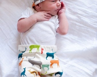 Organic Elk Grove Knit Cotton Leggings // Preemie-24 mos.