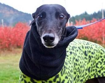 Lime Leopard Fleece Coat for Greyhound/Fleece Dog Coat/Greyhound Coat/Fleece Greyhound Coat/ Snood Coat/Sighthound Coat/