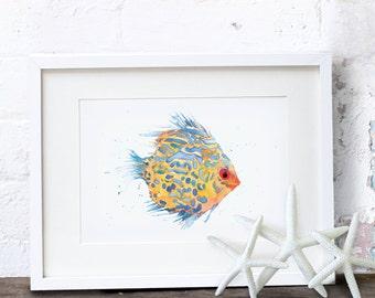 A3 and A2 Tropical Fish Art Print - Discus Fish Watercolour