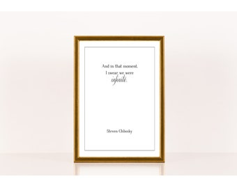 We were infinite, Literary Print, Steven Chbosky, Literary Poster, Downloadable Print, Instant Download, Printable Art, Literature Quote