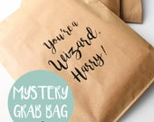 Harry Potter mystery bag lucky dip grab bag Harry Potter gift bag - a mix of paper goods and stationery goodies inside