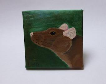 Sale Rat Painting Mini Original Art Canvas Painting Wild Woodland Animal Rat