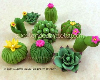 Deluxe Set of 9 Cacti and Succulent Fondant Cupcake Toppers
