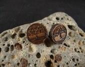 Round Stud / Post Earrings w/ Tree engraving - Zebra Wood - 14mm diameter - Light