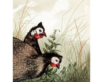 Guinea Fowl Card - Guineas Catch Bugs in Meadow - Vintage Style Notecard