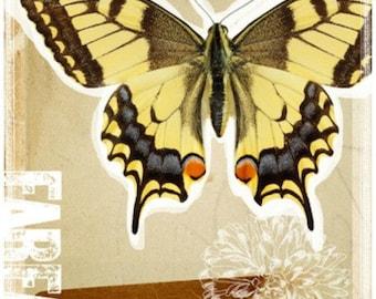Papilio Machaon - Cross stitch pattern pdf format