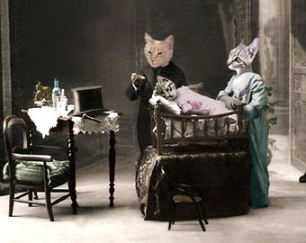 House Call, Cat Art, Anthropomorphic, Photo Collage, Altered Photograph, Whimsical Art, Gift for Veterinarian, Vintage Cat Art