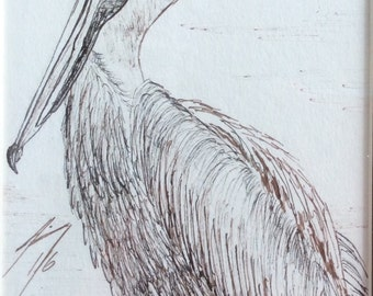 Coastal Pelican - Original 4 x 6 Framed Pen and Ink Drawing