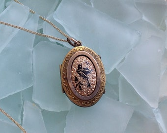 """SALE CAVIAR DREAMS Victorian Etruscan Yellow Rose Gold Taille D'Epargne Mourning Locket Gold Filled Chain Necklace - 18"""" - Etsy andersonhs"""