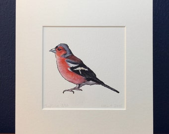 Chaffinch Print - Mounted