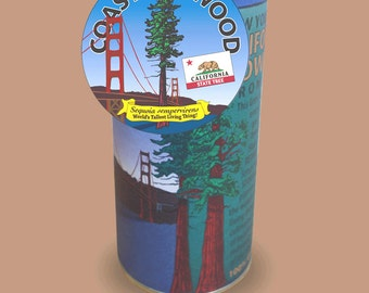 Coast Redwood seed germination kit