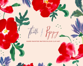 Clipart Hand Painted Watercolour Flowers - Thistle and Poppy