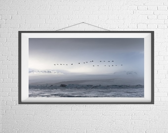 Fine Art Photography Print - Panorama, Landscape, Nature - Birds over the Lake - Iceland