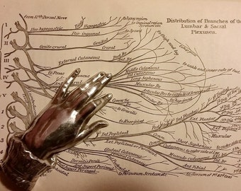 Antique Anatomy Book from 1913 with WWI Memento - Shell Shock