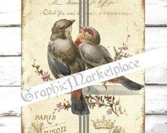 Birds Nest Eggs Oiseau Instant Download Transfer Burlap digital collage sheet graphic printable No. 518