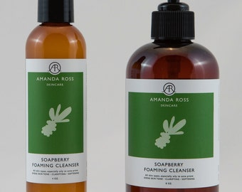 Soapberry Foaming Cleanser No. 1012
