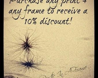 Framed Photograph, Beach Photography, Coastal Wall Art, Choose a Print & Matching Frame, Wooden Picture Frame 12x16