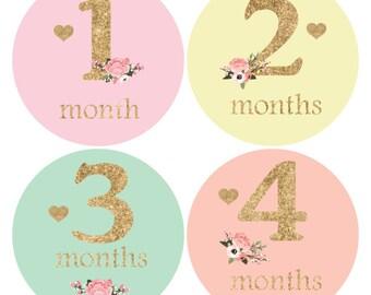 Baby girl monthly sticker, Floral Baby sticker, Glitter Baby Month Sticker, Baby Shower Gift, Milestone Stickers, Heart Stickers,growth A137