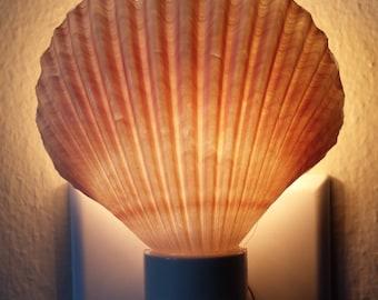 Seashell Night Light, Night Light, Shell Night Light, Beach Lighting, Shell Nightlight, Beach Decor