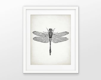 Dragonfly Print - Dragonfly Illustration - Dragonfly Art - Dragonflies - Dragonfly Drawing Print - Single Print #1555 - INSTANT DOWNLOAD