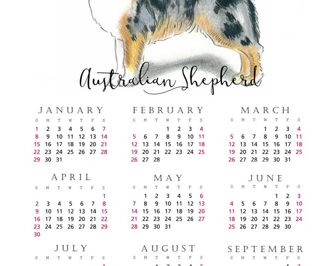 Australian Shepherd 2017 yearly calendar