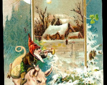 1907 Pigs Running New Years Postcard