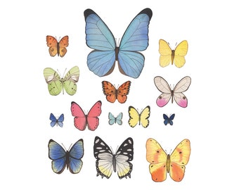 Watercolor Butterfly Collection 8x10 Archival Print / Colorful Nature Decor Butterflies Nursery / Gifts Under 30 / Contemporary Fine Art