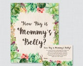 Succulent Baby Shower How...