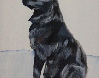 Canvas Print of Retriever Dog Portrait