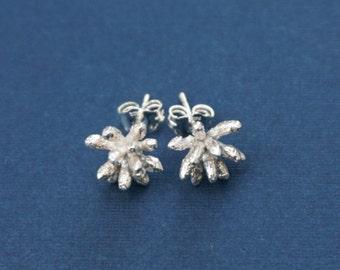Fairy duster stud earrings, sterling silver