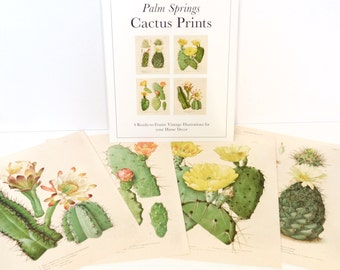 Palm Springs Cactus Print Set. Botanical Cacti blossom Set of 4. Vintage Chart Diagram Cactus Desert Poster Pull Down Chart flowers CP285