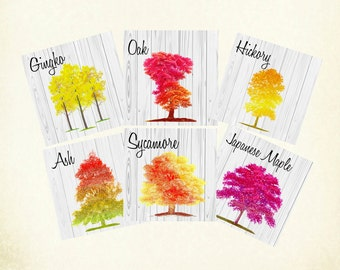 Autumn Tree Table Cards, Autumn Tree Numbers, Autumn Wedding Table Cards,  Double Sided, Fall Wedding, Fall Table Numbers Harvest Table Card