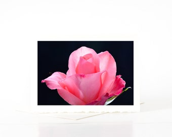 Pink Rose Cards, Cards for Her, Girlfriend, Wife, Blank Photo Greeting Card, Photo Note Card, Nature Flower Cards Sets