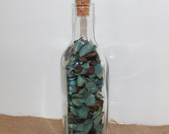 Dried Hydrangea in a Bottle