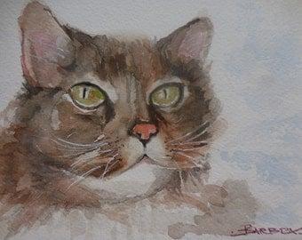 Watercolor cat, original, small watercolors, cats paintings