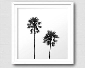 Palm Tree Art Print, Tropical Plant, Black and White Art Print, Instant Download, Digital Art Print, Wall Decor, Modern Wall Art