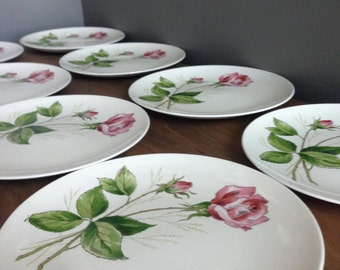 Vintage Knowles (Accent Shapes By Knowels) Tearose Dinner Plates