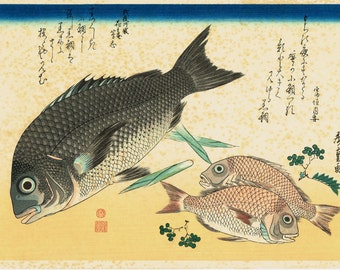 "Japanese Ukiyoe, Woodblock print, antique, Hiroshige, ""Black Sea Bream, Crimson Sea Bream & Japanese Pepper"""