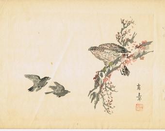 "1913, Japanese Woodblock print, antique, Nakajima Yusyo, ""Eagle"""